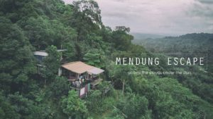 Mendung Escape in the woods