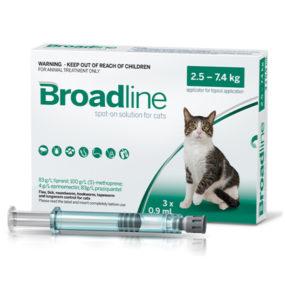 Broadline cat