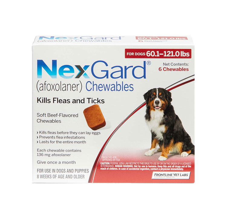 Nexgard dog