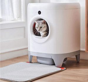 automatic cat litter