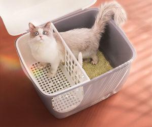 Cat litter box hooded