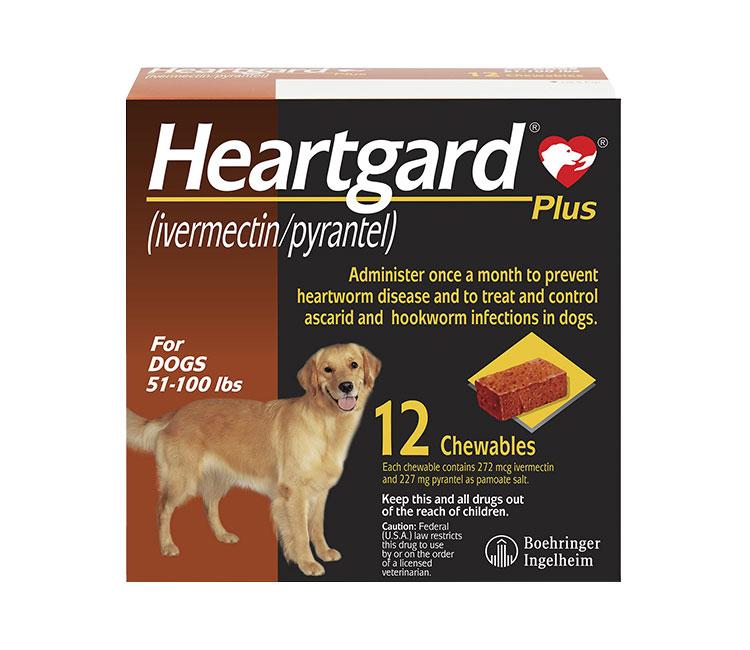 heartgard dog