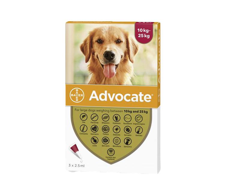 advocate-spoton