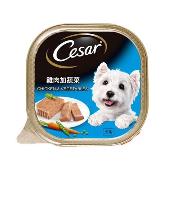 Cesar dog