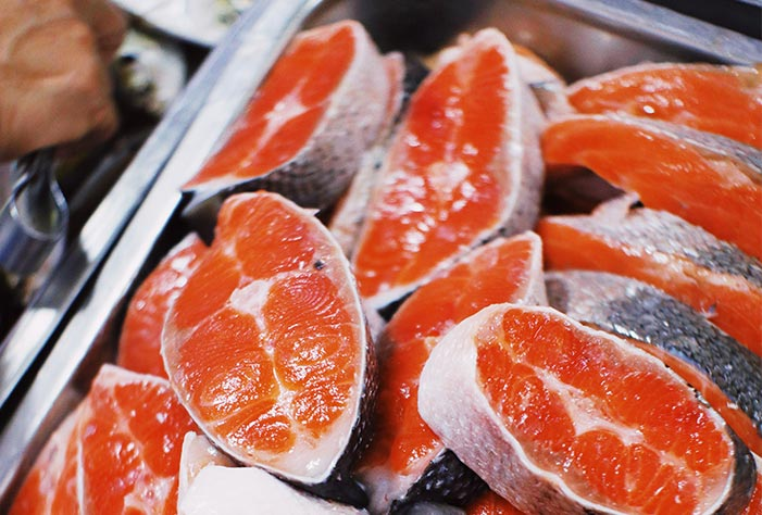 salmon meat for pet